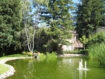 Vineyard, Residential Rental Saratoga
